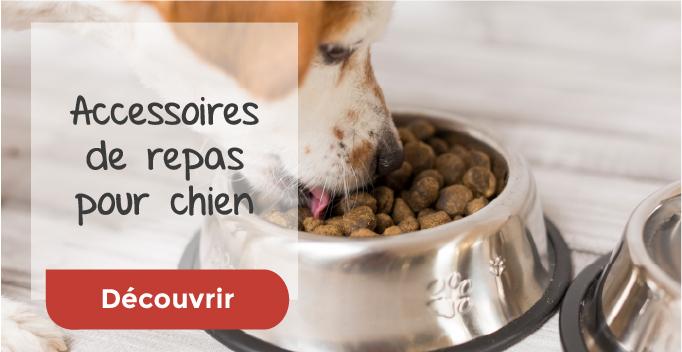 Accessoires de repas pour chien