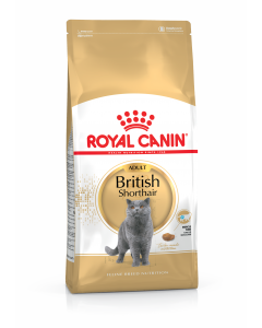 ROYAL CANIN British Shorthair Adult. Croquettes pour Chat +12 mois
