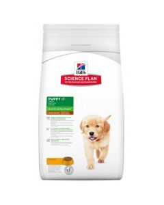 HILL'S - Canine Puppy Large Breed 16kg