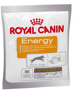 ROYAL CANIN Energy friandise pour chien sportif 50 g