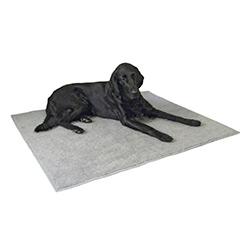 Tapis chauffant pour chien